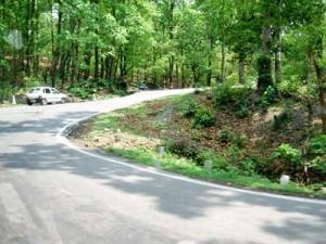 インド・デラドゥーンからリシケシへの道