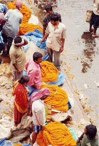 インド・コルカタの花市場