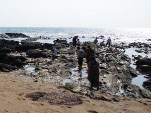 インド・アンジュナビーチ