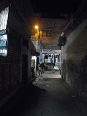 インド、夜のブジ