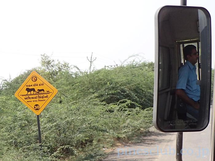 道端の注意看板にはインドライオンが描かれている