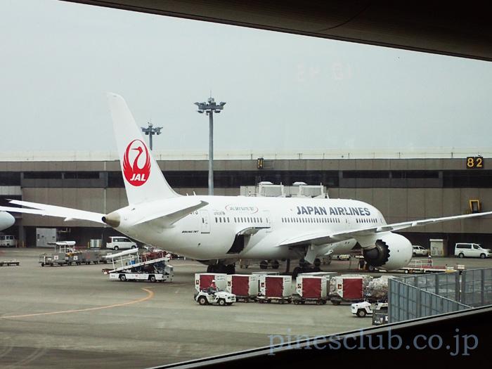 日本航空のデリー便