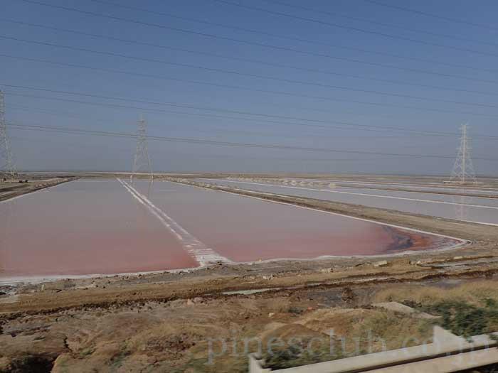 インド、グジャラート州、小カッチ湿原の塩田