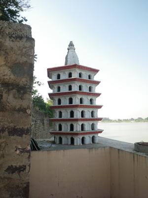インド、ハトのマンション